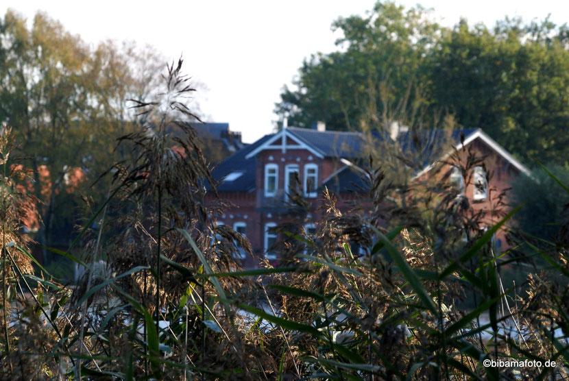 Herbst am Mühlenteich in Bredstedt ...