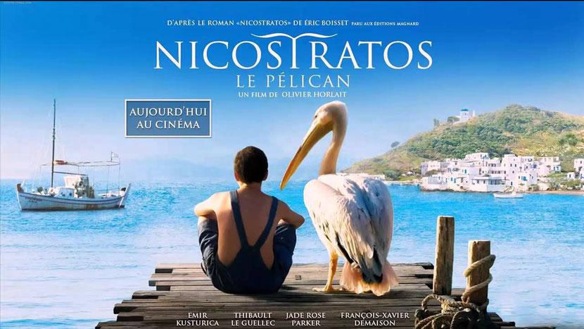 animaux célèbres nicostratos le pelican