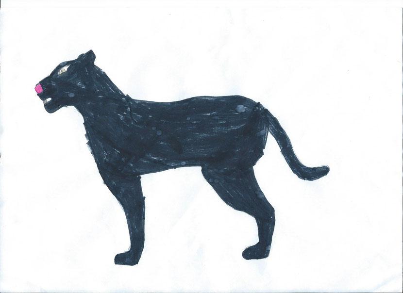 dessin panthere noire