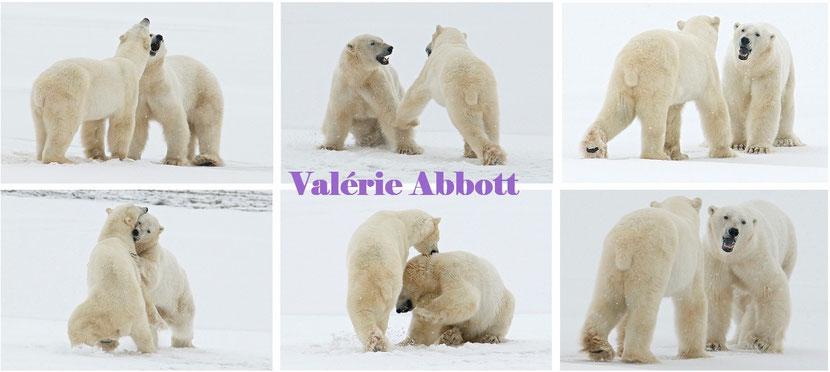 valerie abbott