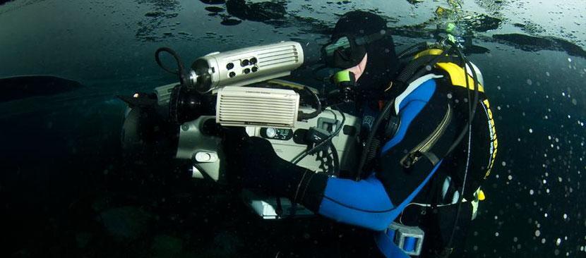 metier plongeur cineaste animalier mario cyr interview