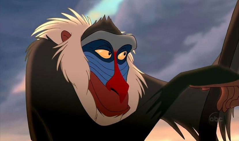 animaux disney rafiki singe sorcier mandrill