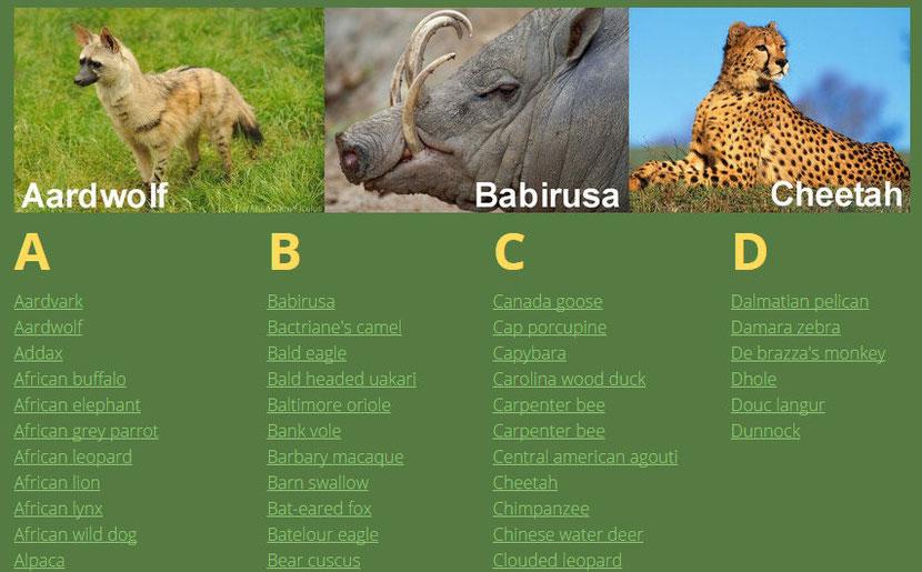animals listing organised alphabetically