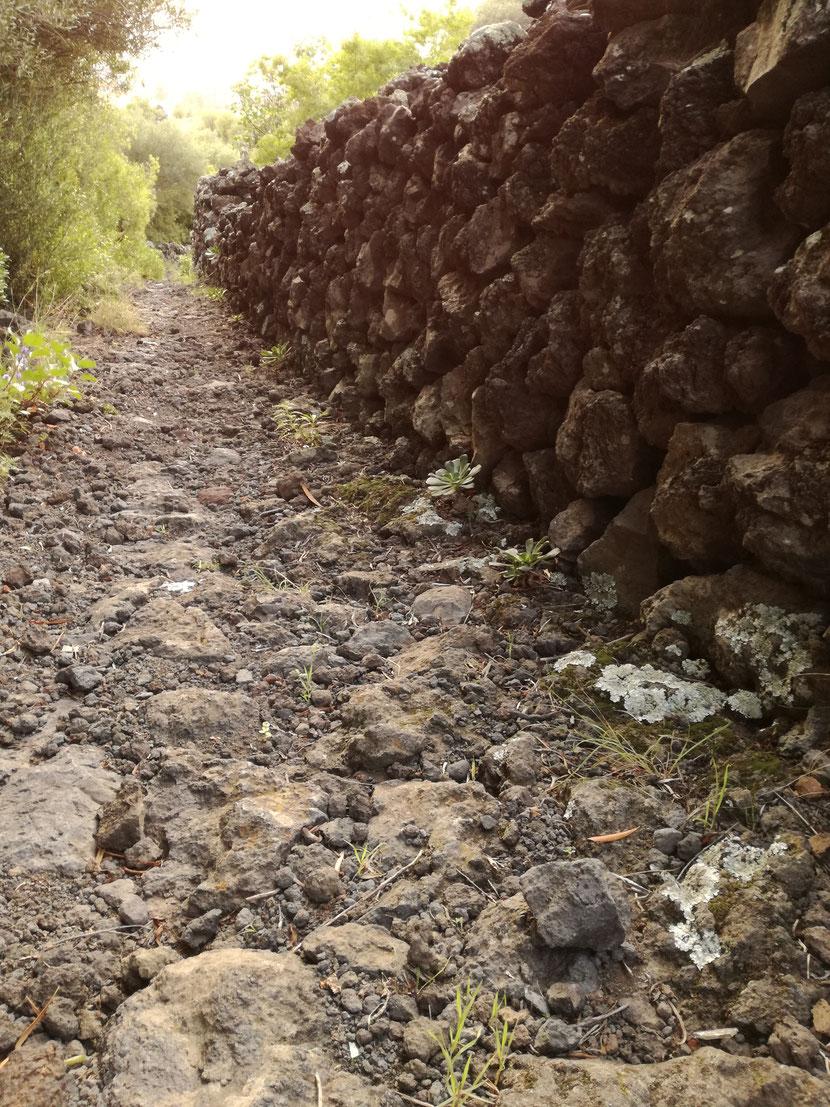 Camino de piedra de la pedanía de Azguán / Camino real de Breña Baja, La Palma.