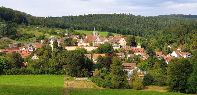 Eines der schönsten Panoramen von Bebenhausen bietet sich nach einem kurzen Fußmarsch entlang des Rittwegs, vom Tübinger Stadtteil Waldhäuser-Ost aus kommend. Bild: Max Witzler.