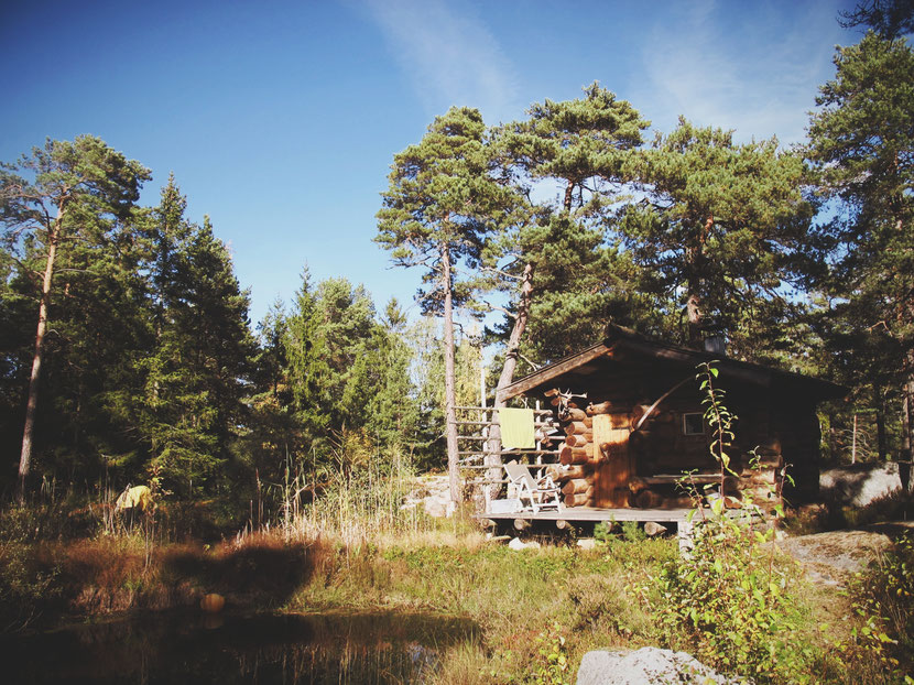suède bigousteppes bois forêt sauna cabane