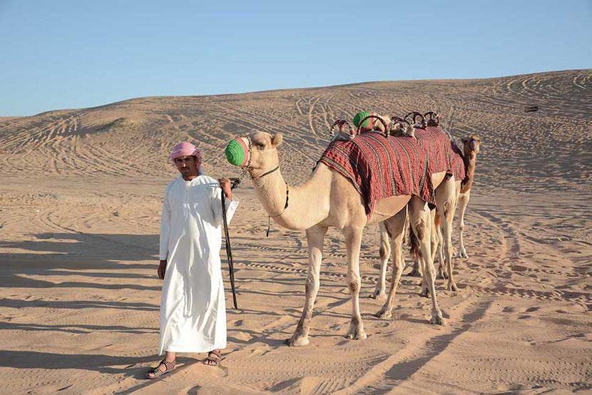 camel riding during Desert Safari in  Dubai