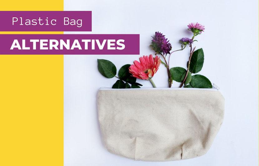 The best plastic bag alternatives