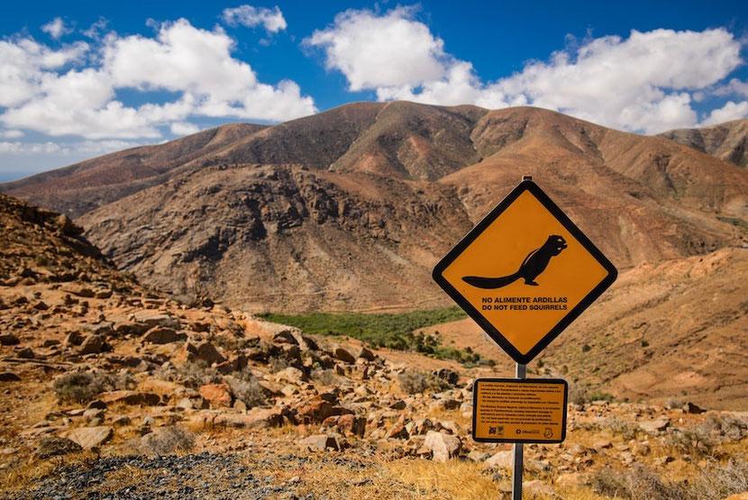 оранжевые горы и вулканы острова Фуэртевентура