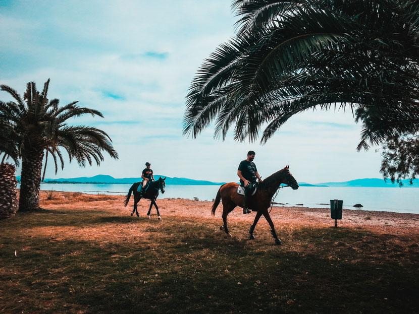 конная езда на пляже Неа Макри возле Афин