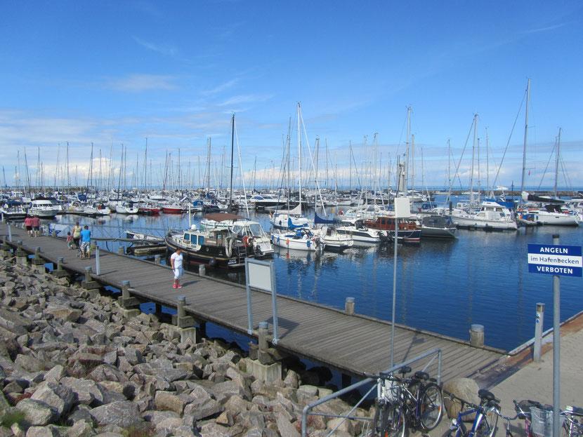 Bootshafen vom Deich aus fotografiert in Richtung Westen