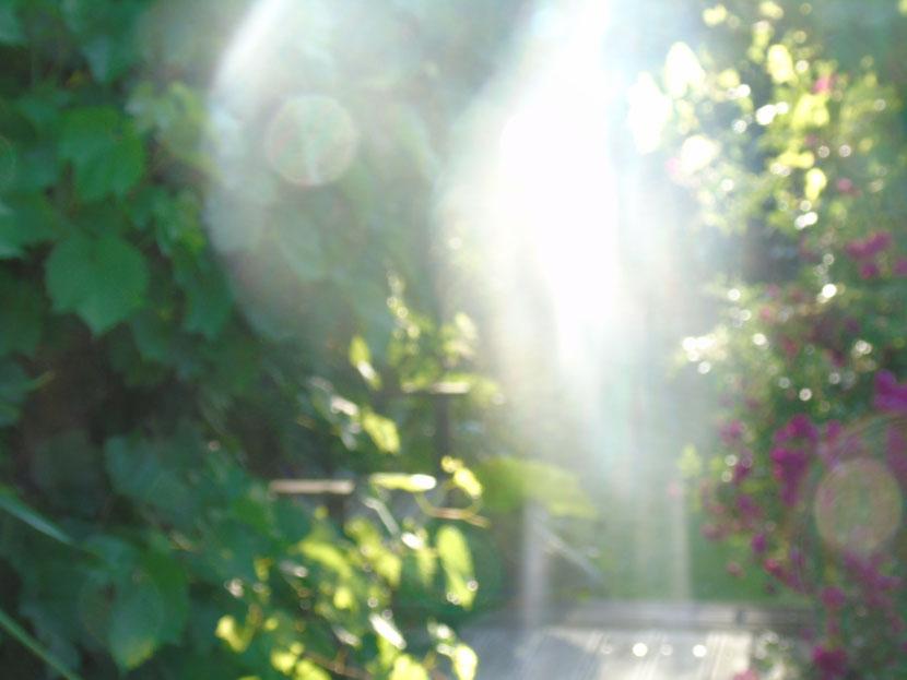 Ich bin dein Engel der tröstenden Worte, Quelle: www.lichtwesenfotografie.com