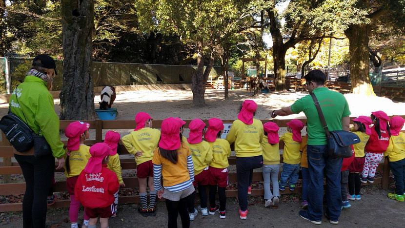 五月山動物園で遠足