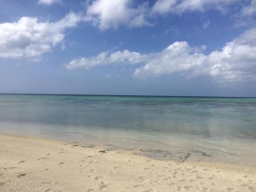 リゾバ 石垣島