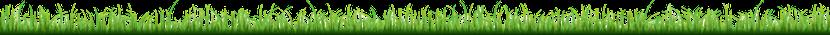Gras Banner flach