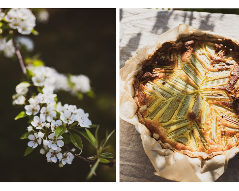 Rhabarberkuchen und Blumen aus dem Garten