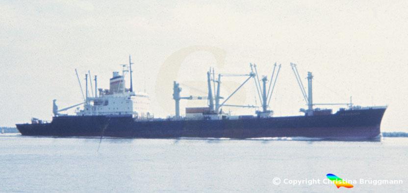 """Hapag-Lloyd """"SCHWABENSTEIN (II)"""" nach Umbau zum Semi-Containerschiff 1983"""