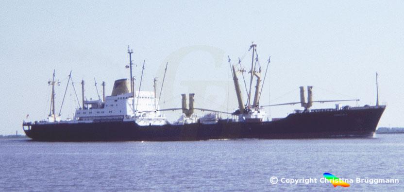 """Venezolanischer Stückgutfrachter """"VENEZUELA"""" auf der Elbe 1986"""
