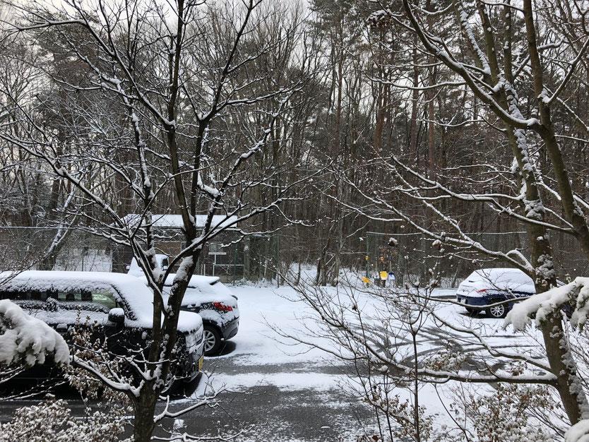 3月10日の雪景色。こんなに白いと思っていなかったので、カーテンを開けて思わず「おお?」と声が出てしまった。