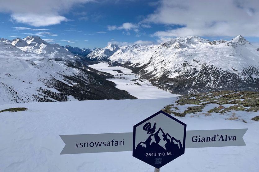 Giand'Alva Aussichtspunkt - Corvatsch - St. Moritz