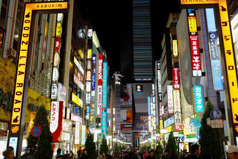 Tokio Shinjuku by Night Walking Tour neon signs