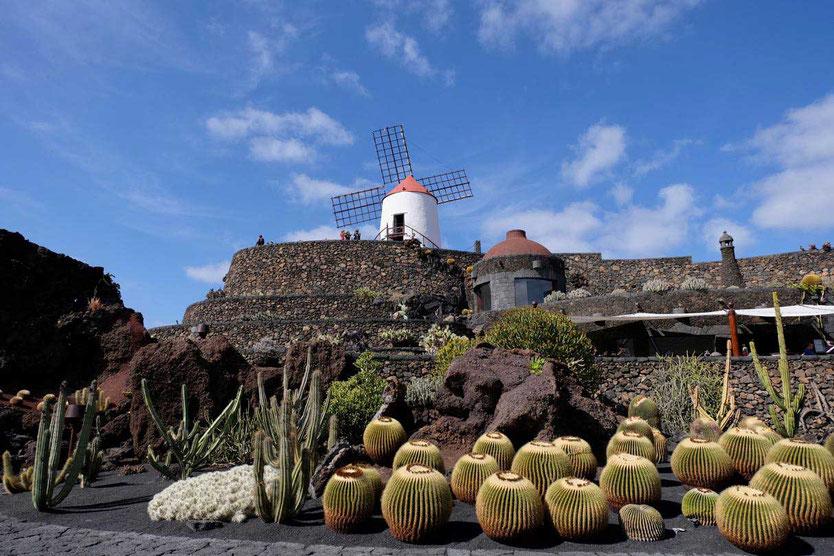 Jardin de Cactus Kakteengarten Lanzarote Cesar Manrique