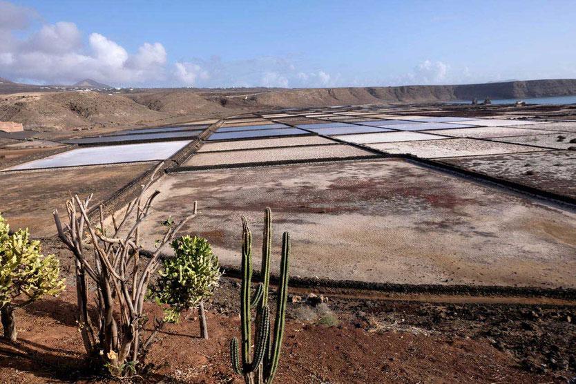 Salinen Salinas de Janubio, Lanzarote Sehenswürdigkeit