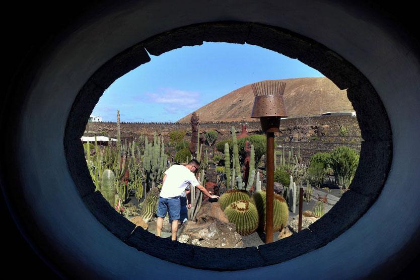 Jardin de Cactus Besucherinformation Kaktusgarten Lanzarote Cesar Manrique