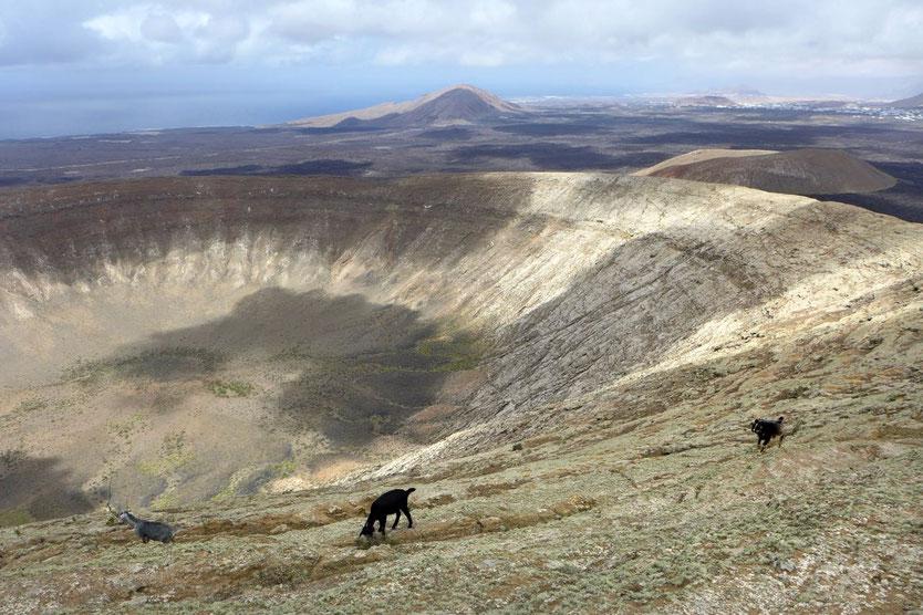 Lanzarote Hike spektakulärste Vulkanwanderung – auf dem Kraterrand der Caldera Blanca