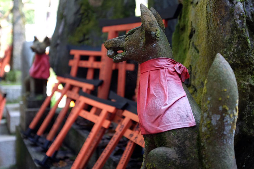 Inari Schrein Fuchs Fushimi Inari Torii walk Kyoto Highlight Schrein Tempel der 1000 Tore