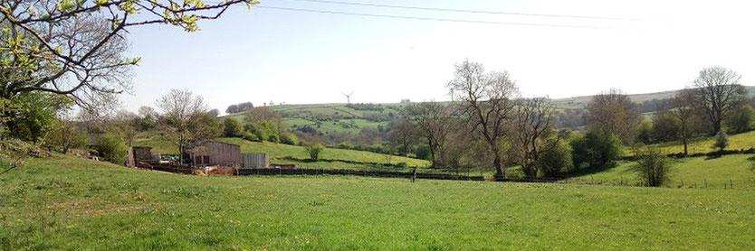 Bonsall Moor guided walk