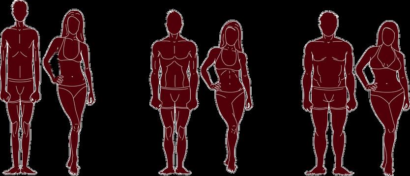Körpertypenbestimmung Strandfit