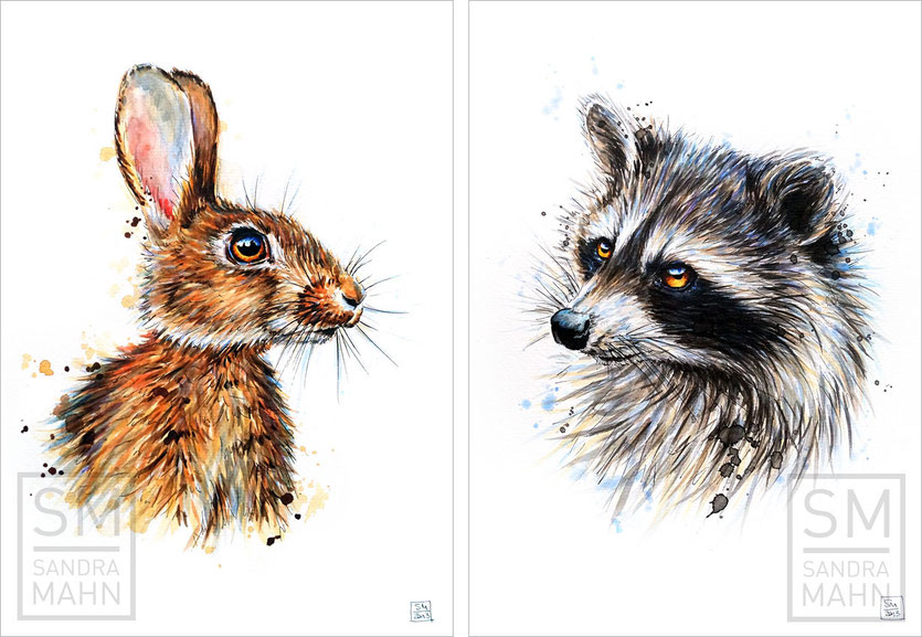 Kaninchen (verkauft) - Waschbär (verkauft) | rabbit (sold) - raccoon (sold)