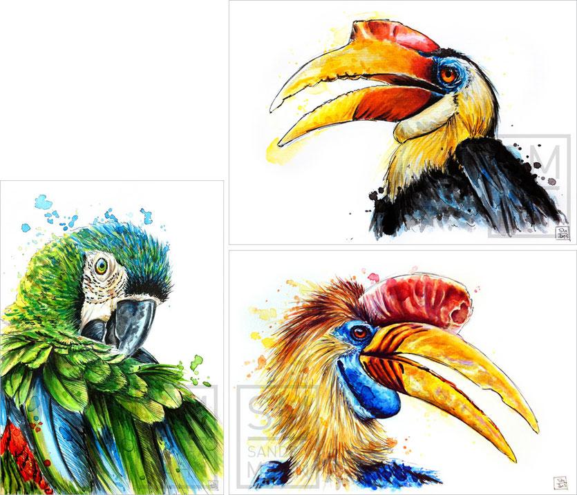 Papagei (verkauft) - Nashornvogel (verkauft) - Nashornvogel (verkauft) | macaw (sold) - hornbill (sold) - hornbill (sold)