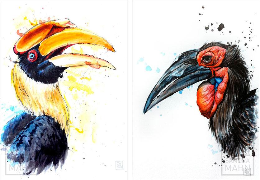 Nashornvogel (verkauft) - Südlicher Hornrabe (verkauft) | hornbill (sold) - southern ground hornbill (sold)