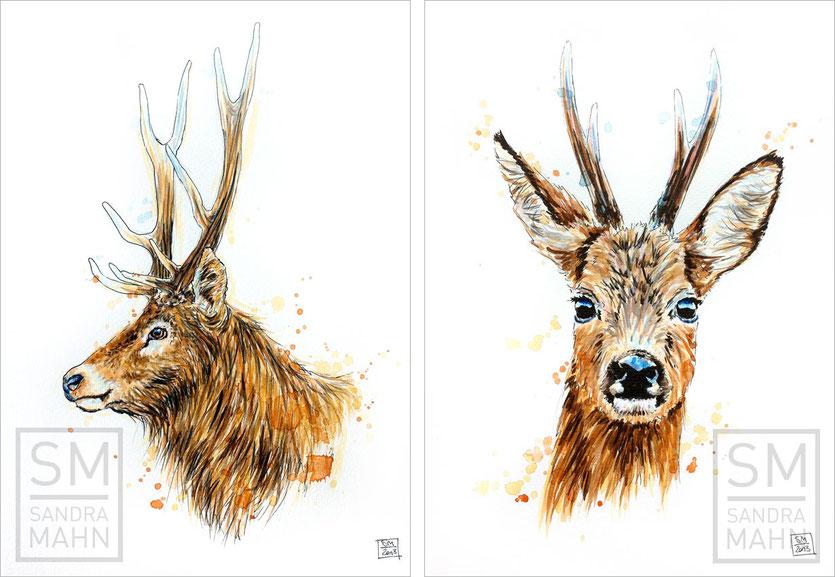 Rothirsch (verkauft) - Rehbock (verkauft) | red stag (sold) - roe buck (sold)