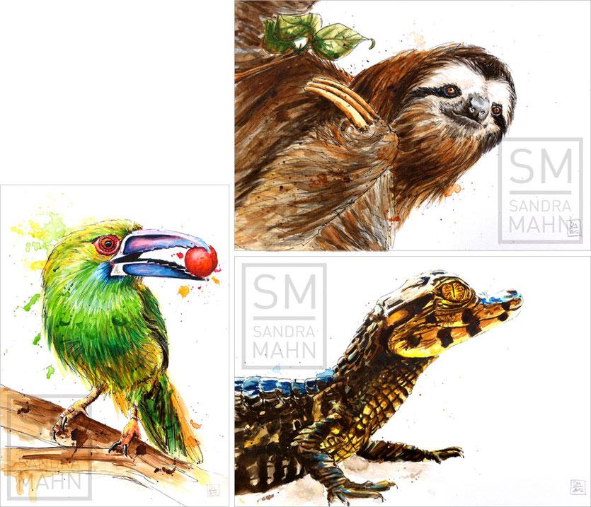 Blutbürzelarassari (verkauft) - Faultier (verkauft) - Krokodil (verkauft) | crimson-rumped toucanet (sold) - sloth (verkauft) - crocodile (sold)