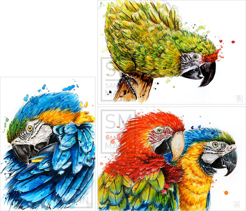 Papagei (verkauft) - Papagei (verkauft) - 2 Papageien (verkauft) | macaw (sold) - macaw (sold) - 2 macaws (sold)