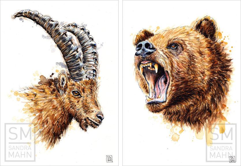 Steinbock (verkauft) - Bär (verkauft) | ibex (sold) - bear (sold)