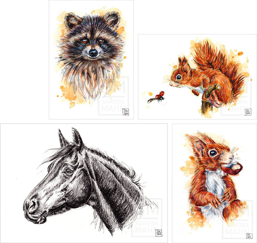Waschbär (verkauft) - Eichhörnchen (verkauft) - Pferd - Eichhörnchen (verkauft) | raccoon (sold) - squirrel (sold) - horse - squirrel (sold)