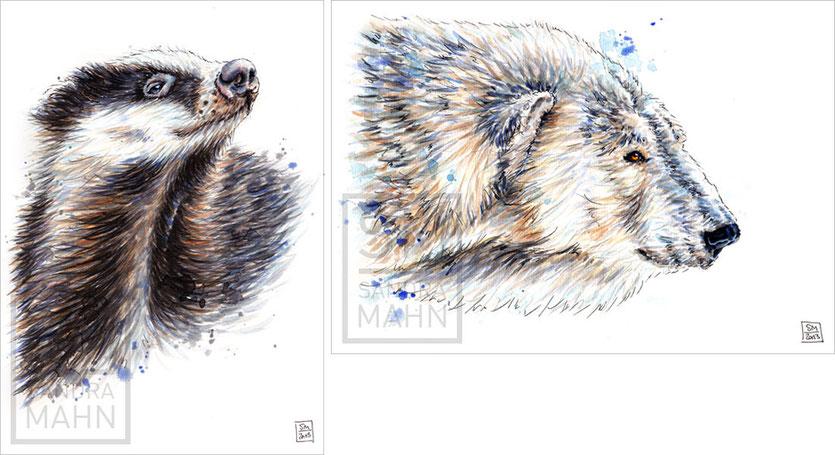 Dachs (verkauft) - Eisbär (verkauft) | badger (sold) - polar bear (sold)