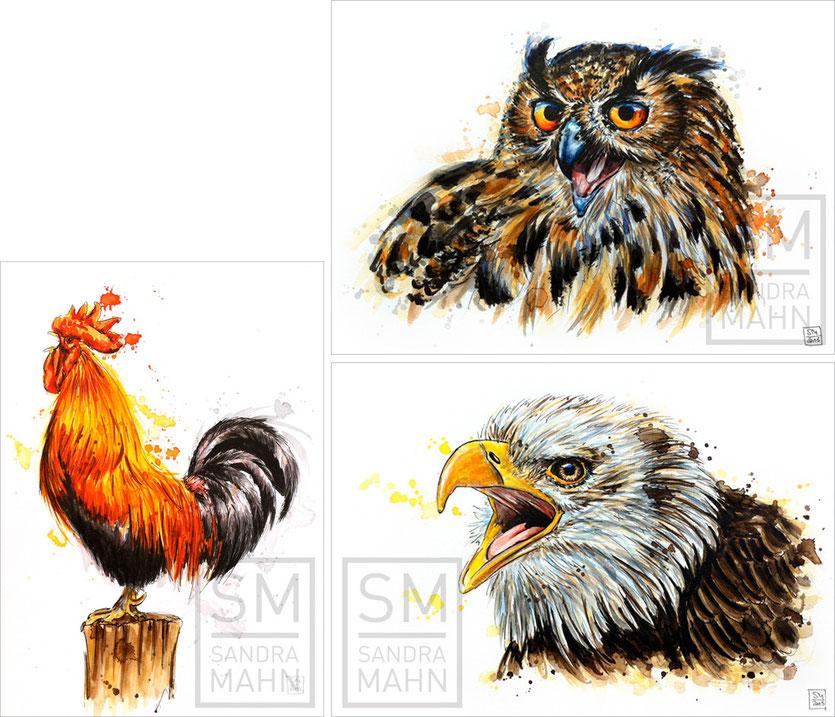 Hahn - Uhu (verkauft) - Adler | rooster - eurasian eagle-owl (sold) - eagle