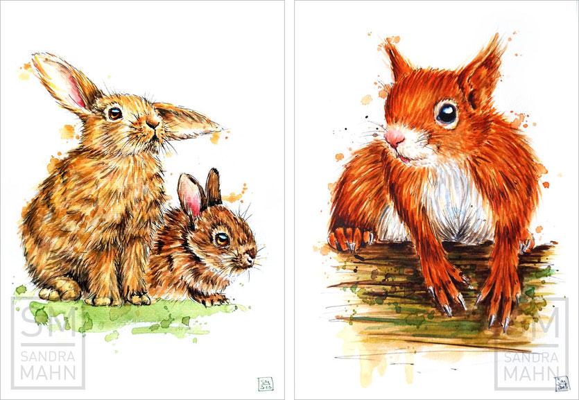 2 Kaninchen (verkauft) - Eichhörnchen (verkauft) | 2 rabbits (sold) - red squirrel (sold)