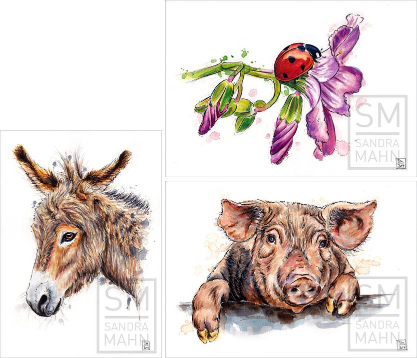 Esel - Marienkäfer - Schwein | donkey - lady bug - pig