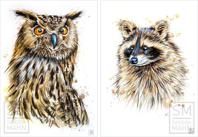 Uhu (verkauft) - Waschbär (verkauft) | eagle-owl (sold) - raccoon (sold)