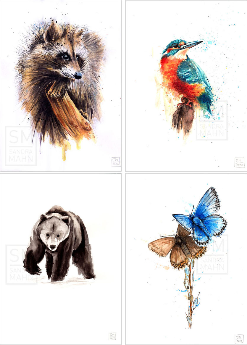 Waschbär (verkauft) - Eisvogel (verkauft) - Bär (verkauft) - Schmetterlinge | raccoon (sold) - kingfisher (sold) - bear (sold) - butterflies