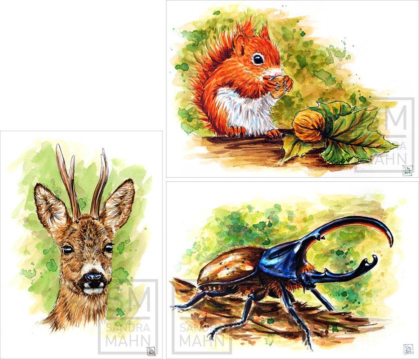 Rehbock (verkauft) - Eichhörnchen (verkauft) - Herkuleskäfer (verkauft) | roe buck (sold) - red squirrel (sold) - hercules beetle (sold)