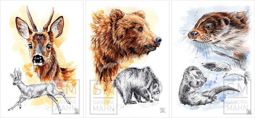 Reh - Bär (verkauft) - Fischotter (verkauft) | deer - bear (sold) - otter (sold)