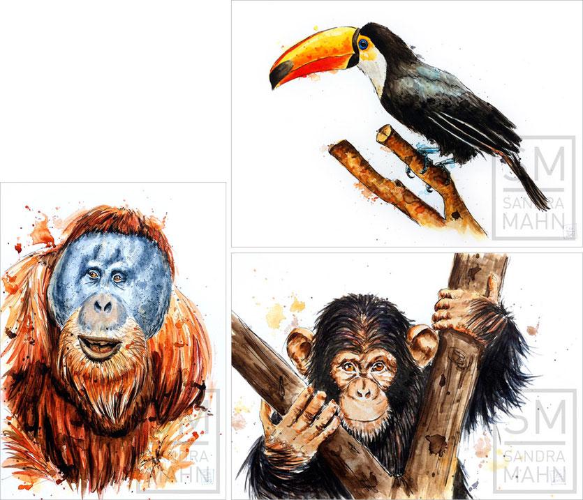 Orang Utan (verkauft) - Tukan (verkauft) - Schimpanse | orangutan (sold) - toucan (sold) chimpanzee
