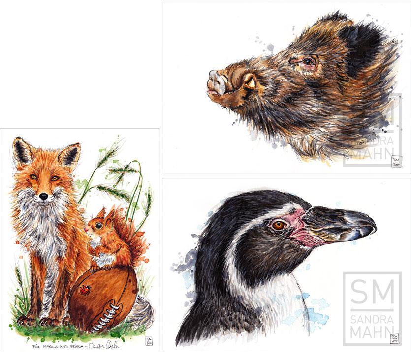 Fuchs & Eichhörnchen - Wildschwein - Pinguin | fox & squirrel - wild boar - penguin